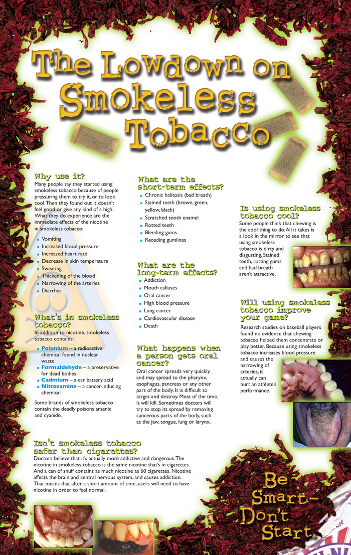 Smokeless Tobacco    Your Habit or Your Life Pamphlet