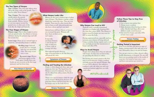 In The Know: Herpes: The Forever Infection Pamphlet