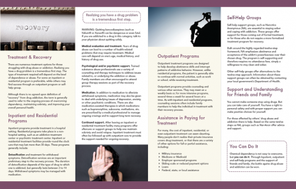 InFocus: Treatment and Recovery – Drug Abuse and Addiction Pamphlet