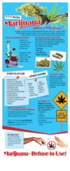 In the Know: Marijuana Rack Card