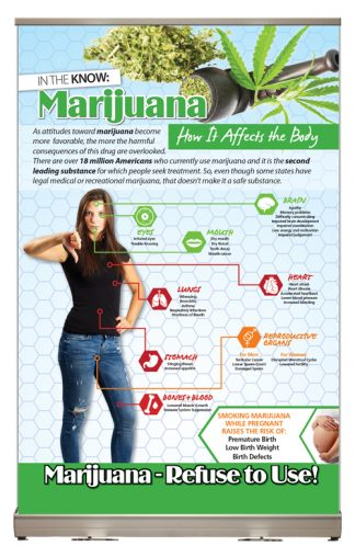 Marijuana: How it Affects the Body Tabletop Display