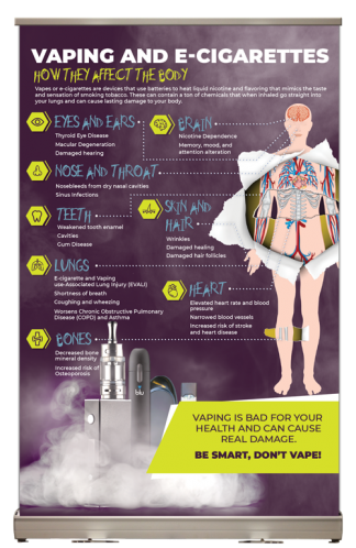 Vaping: How it Affects the Body Tabletop Display